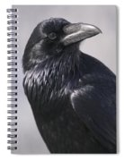 Common Raven, Jasper National Park Spiral Notebook
