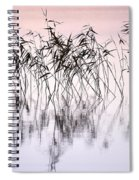 Common Reeds Spiral Notebook