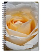 Common Wealth Glory Rose Spiral Notebook