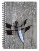 Common White Tail Dragonfly Spiral Notebook