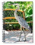 Company Cp Spiral Notebook