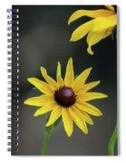 Compass Points Spiral Notebook