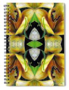 Compassion - Card X From The Tarot Of Flowers Spiral Notebook