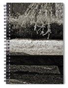 Concurrence Of Causes Spiral Notebook
