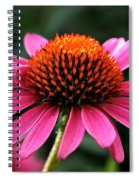 Cone Dome Spiral Notebook