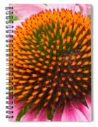 Cone Flower 7 Spiral Notebook