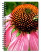 Cone Flower And Guest Spiral Notebook