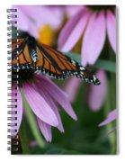 Cone Flowers And Monarch Butterfly Spiral Notebook