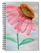 Coneflower - Watercolor Spiral Notebook