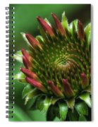Coneflower Close-up Spiral Notebook