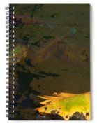 Conferring With The Yellow Spiral Notebook
