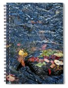 Confetti By Mother Nature Spiral Notebook