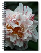 Confetti Floral Spiral Notebook