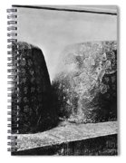 Confucian Writings Spiral Notebook