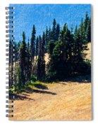 Conifer Clusters Spiral Notebook