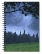 Coniferous Trees Early In The Morning Spiral Notebook
