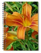 Consider The Lilies Of  The Field - Hemerocallis Fulva Spiral Notebook