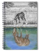 Contemplating Reality - Mare And Foal Horse Print Spiral Notebook