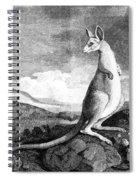 Cook: Kangaroo, 1773 Spiral Notebook