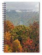 Cooper's Rock West Virginia Spiral Notebook