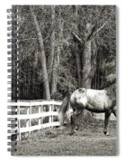 Coosaw - Outside The Fence Black And Wite Spiral Notebook