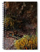 Copper And Gold Spiral Notebook