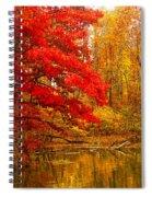 Copper Cove Spiral Notebook