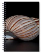 Copper Stripes Spiral Notebook