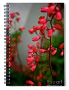 Coral Bells Spiral Notebook