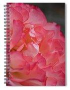 Coral Ruffles Spiral Notebook