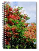 Coral Shower Trees Spiral Notebook
