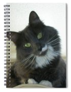 Corky 0124 Spiral Notebook