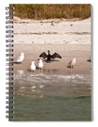 Cormorant Stands Out Spiral Notebook