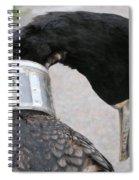 Cormorant With Radio Collar Spiral Notebook
