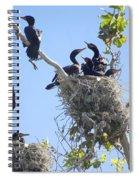 Cormorants Nesting Spiral Notebook