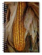 Corn Stalks Spiral Notebook