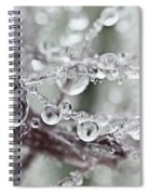 Corned Jewels Spiral Notebook