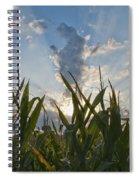Cornlight Spiral Notebook