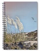 Coronado Island Pampas Grass Spiral Notebook