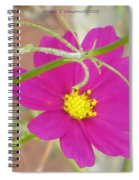 Cosmic Florets Spiral Notebook