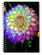 Cosmic Natural Beauty Spiral Notebook