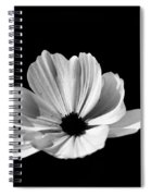 Cosmo Black And White Spiral Notebook