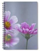 Cosmo Dreams Spiral Notebook