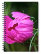 Cosmos Coming Soon Spiral Notebook