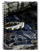 Cotton Mouth Hiding In Gum Swamp Spiral Notebook