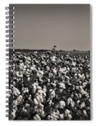 Cotton The Heart Of Dixie Spiral Notebook
