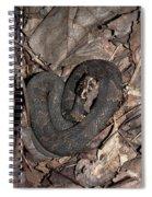 Cottonmouth Spiral Notebook