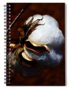 Cotton's Inner Light Spiral Notebook