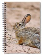 Cottontail Bunny Spiral Notebook