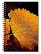 Cottonwood   Spiral Notebook